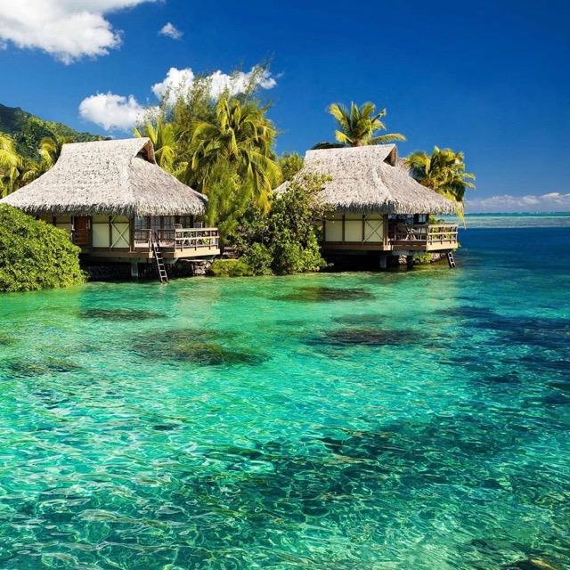 JAMAICA:                   Goldeneye Resort